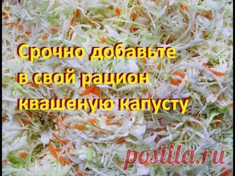 Срочно добавьте в свой рацион квашеную капусту