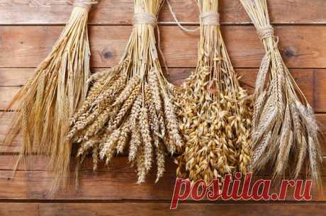 Народные приметы на 31 июля — Емельян, Омельянов день, Омельяны Этот день обычно совпадал с последним днем уборки ржи, после которого готовились к новым сельскохозяйственным работам.