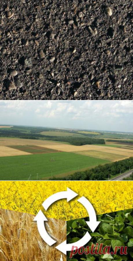 Кремний в почве - БиоКорова