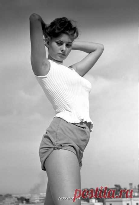Sofi Loren