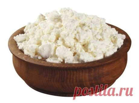 Importance of cottage cheese in a diet