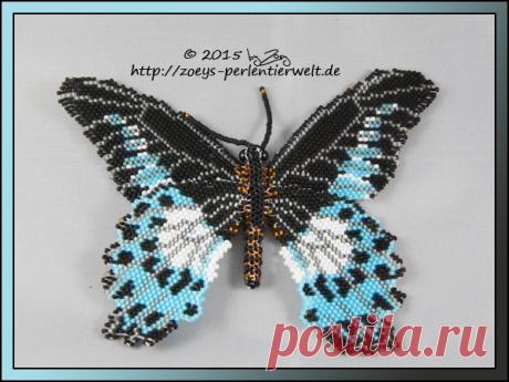 grosser Schmetterling by Zoey-01 on DeviantArt