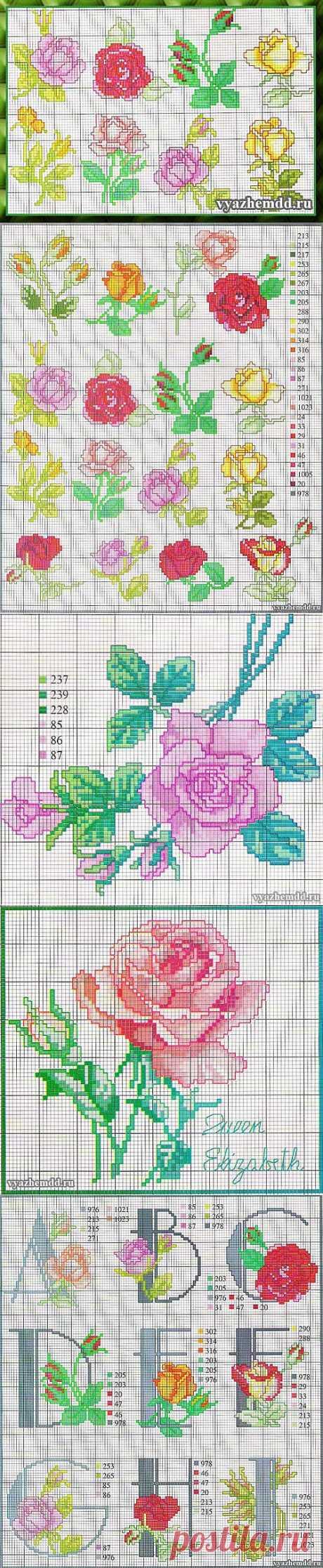 Розы - бесплатные схемы вышивки | Милые мелочи