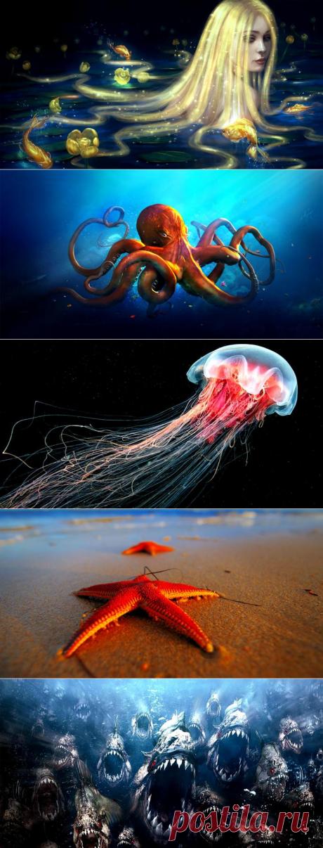 Какой обитатель морей и океанов соответствует вашему знаку зодиака