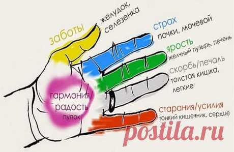 Nuestros dedos curan todas las enfermedades