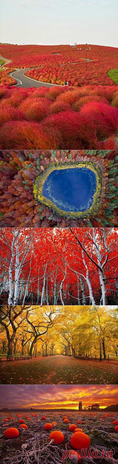 (+1) тема - Яркие осенние фотографии | ТУРИЗМ И ОТДЫХ
