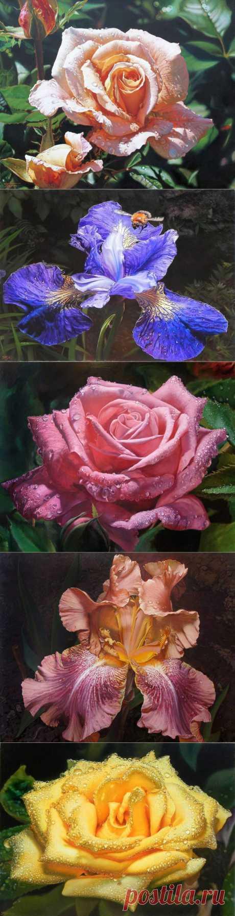 Oleg Turchin | Люблю цветы -они как настроенье....