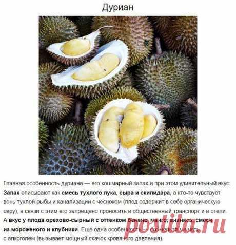 De 10 frutas rarísimas exóticas, que es necesario probar por lo menos la vez en la vida
