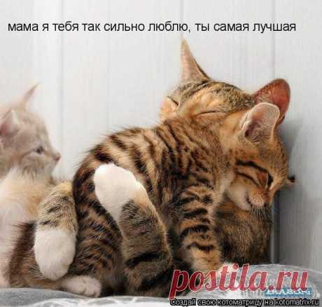 Я люблю тебя мамочка!
