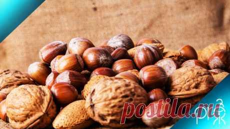 Как употреблять орехи: повышаем усвояемость, не нагружем ЖКТ, получаем больше пользы   PRO-ЗОЖ   Яндекс Дзен
