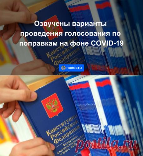 Озвучены варианты проведения голосования по поправкам на фоне COVID-19 - Новости Mail.ru