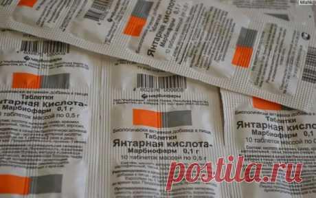 Янтарная кислота – польза для растений и инструкция по применению препарата | OK.RU