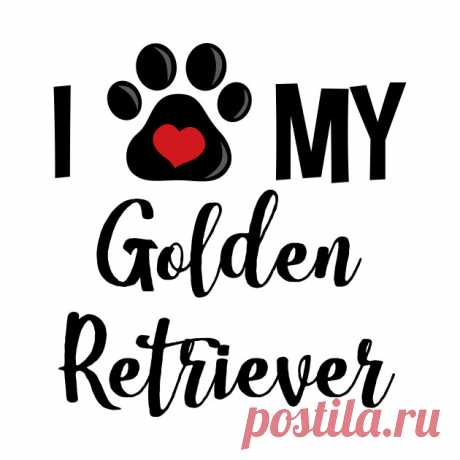 I Love My Golden Retriever (V2) - Golden Retriever Lover - Camiseta | TeePublic MX