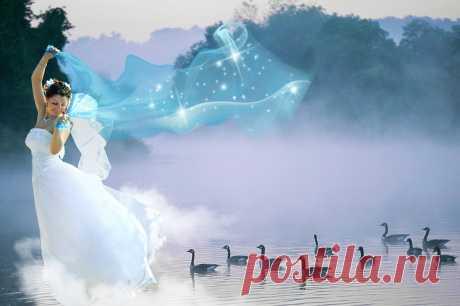 Утиная принцесса