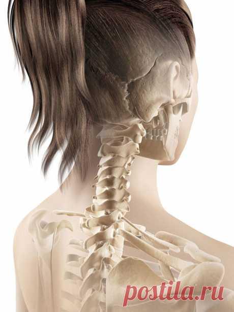 Как лечить шейный остеохондроз у женщин? | Всегда в форме!