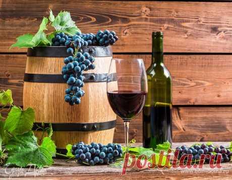 Делаем вкусное домашнее виноградное вино — пошаговые рекомендации