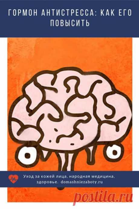 Человеческий организм вырабатывает много веществ, вызывающих приятные ощущения: удовольствие, хорошее настроение, эйфорию. Все эти вещества биохимики называют нейромедиаторами, потому что они отвечают за передачу нервных импульсов.