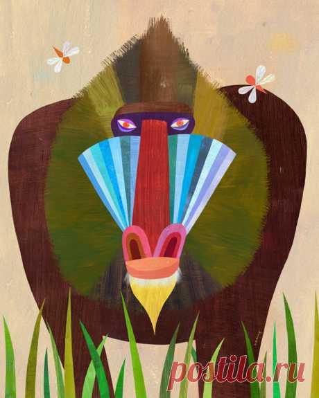 Mandrill Animal Art Print Safari Themed Illustration for | Etsy
