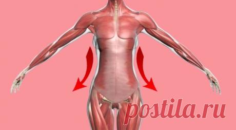 Гимнастика военного врача: невидимые упражнения , чтобы всегда быть в форме