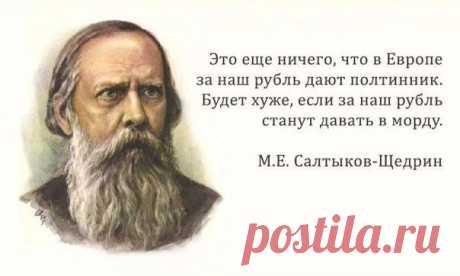 30 метких цитат Салтыкова-Щедрина — Интересные факты