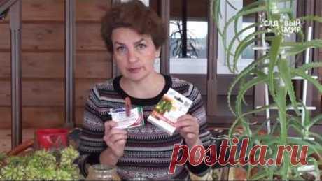 Биопрепараты для замачивания семян