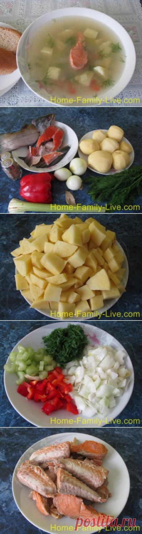 Уха из кеты/Сайт с пошаговыми рецептами с фото для тех кто любит готовить