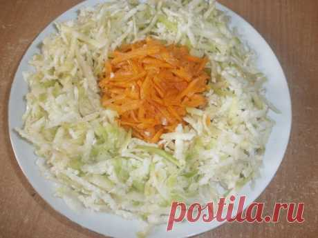 Салат из зеленой редьки и моркови рецепт с фото пошагово - 1000.menu