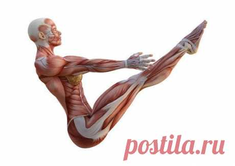 5 упражнений для проработки мышц пресса / Все для женщины