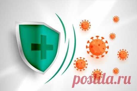 Лучший бесплатный антивирус. | IT Security | Яндекс Дзен