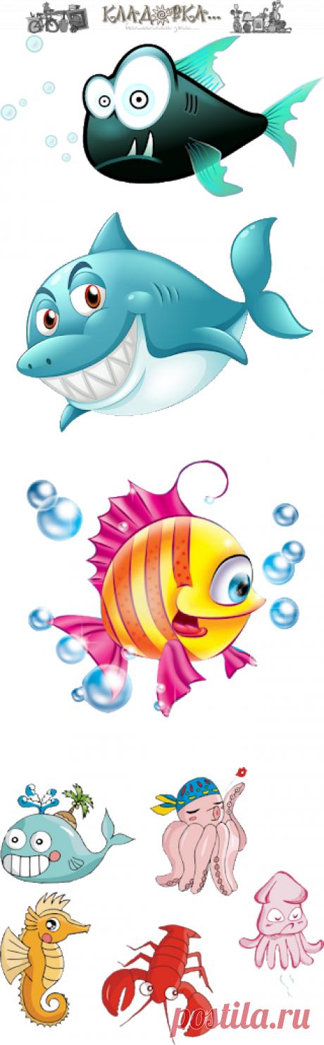 Кладовка...: Морские животные - напрозрачном фоне