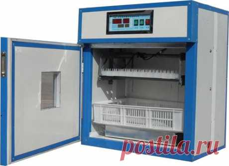 Want to increase the egg production in a faster and productive way? Checkout three sizes of Hightop egg incubator for for hatching eggs, get yours!