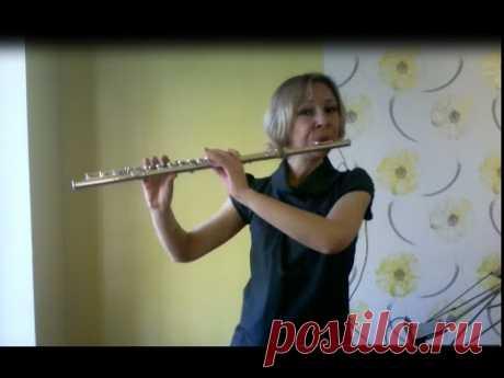 Сравниваем звучание блокфлейты и флейты  Hallelujah