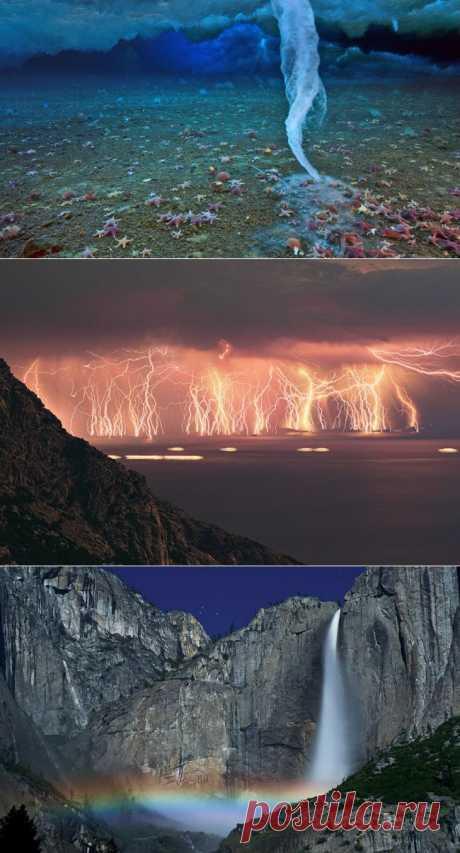 Природа— творец всех творцов