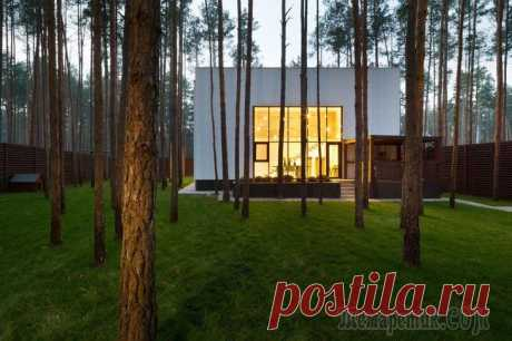 Частный дом в сосновом лесу Украинское дизайн-ателье Yakusha Design представило завершенный проект частного дома под названием «Куб». Он представлен 200 квадратными метрами площади и расположился в пригороде Киева, Украина. Форм...
