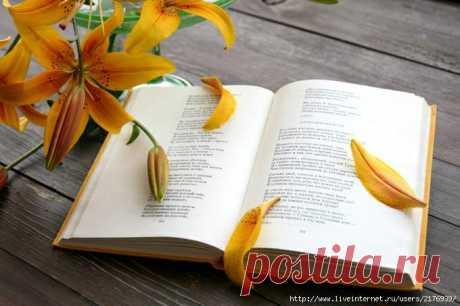 Учись прощать,когда душа обижена.И сердце словно чаша горьких слез,и кажется,что доброта вся выжжена.Ты вспомни,как прощал Христос...(Б.Постернак)