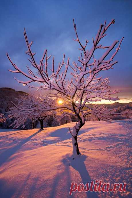 Gorgeous Sunset   Sunrise ~ Sunset & the Moon