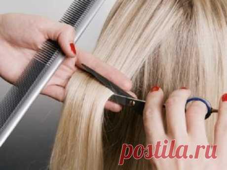 Как распознать хорошего парикмахера Чтобы распознать степень профессионализма стилиста, нужно знать, на что стоит обратить внимание при первой встрече.