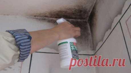Одно из самых эффективных природных средств по борьбе с плесенью в доме. Несмотря на то, что … — Полезные советы