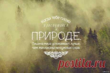 Афоризм о красоте природе - Афоризмы о природе. Высказывания и цитаты о природе