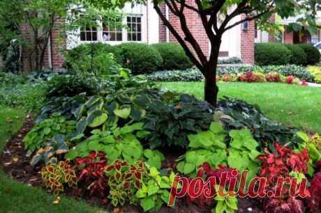 Так просто: 25 крутых фишек, которые превратят ваш участок в сад с обложки | Идеи дизайна (Огород.ru)