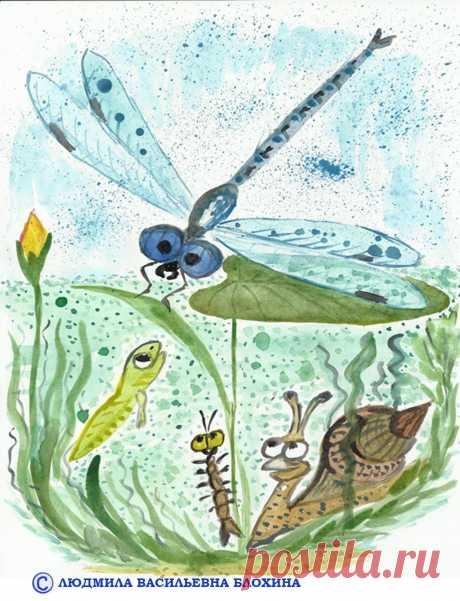 Лягушонок Ляу и комарик