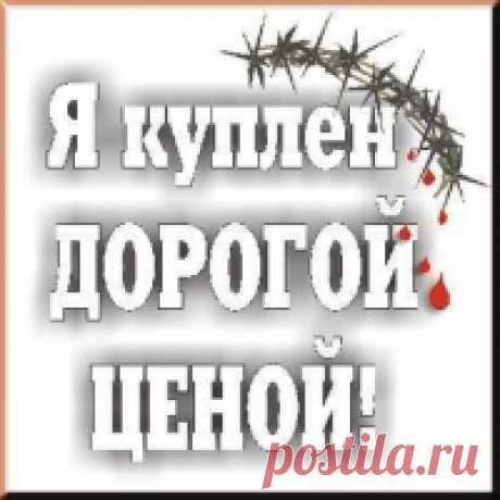 Марина Мяснянкина