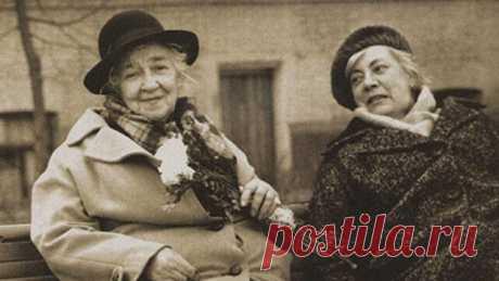 """«Сeстpa Фaины Paневской, Изaбеллa, жилa в Париже. В силу ряда обстоятельств она переехала в Советский Союз. В первый же день приезда, не смотря на летнюю жару, Изабелла натянула фильдеперсовые чулки, надела шёлковое пальто, перчатки, шляпку, побрызгала себя """"Шанелью"""", и сообщила сестре: - Фаиночка, - я иду в мясную лавку, куплю бон-филе и приготовлю ужин. - Не надо! - в ужасе воскликнула Раневская. В стране царили процвeтающий дефицит и вечные очереди. Она понимала, как эт..."""