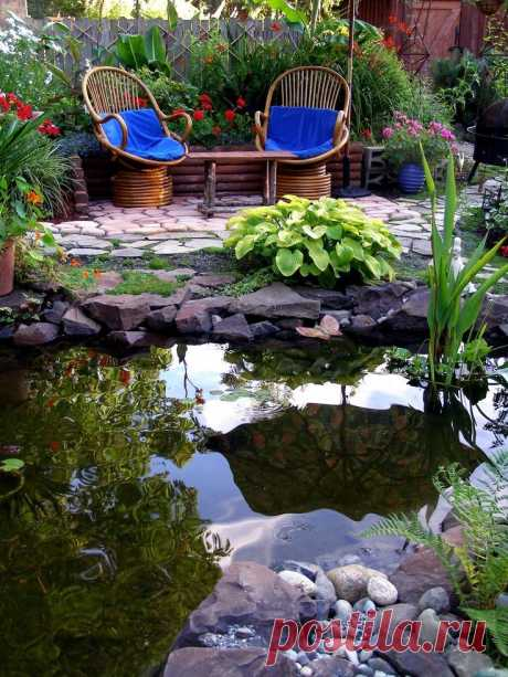 A Pond Provides Peace and Reflection. My Favorite Hangout