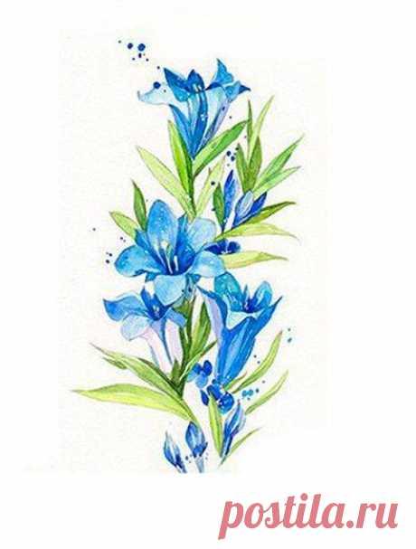 Рисуем полевые цветы акварелью