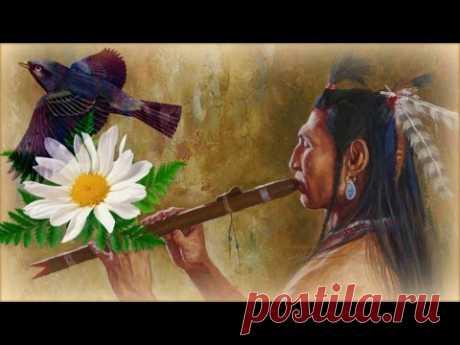 Видео, клипы, видеоклипы, ролики «Индейская Этническая Музыка Души» (775 видео-роликов)