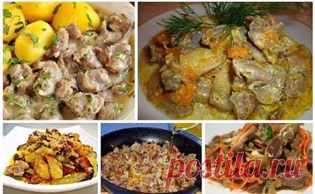 Готовим вкусные куриные желудочки: ТОП 6 рецептов............ #рецепты #кулинария