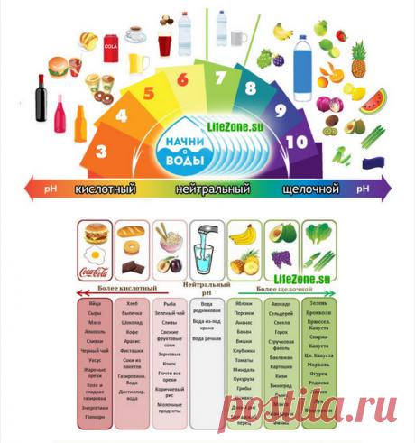 Кислотно-щелочной баланс организма и методы его восстановления   selftime   Яндекс Дзен