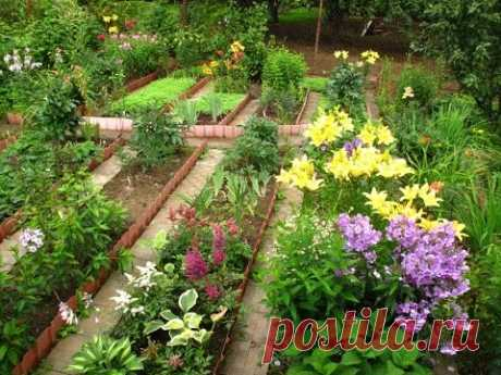 Садовый бизнес. ч.3. Как продавать свои растения