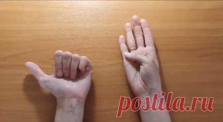 Жена показала простые упражнения для работы мозга. Делаю их каждый день, заметил, что работать стало легче   MyKrasim.ru   Яндекс Дзен